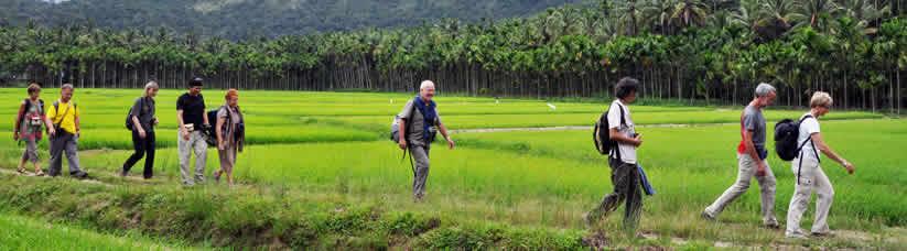 Bamboo Village: Experience Kerala's village life in Thrikkaipetta, a
